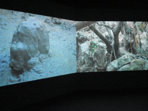 Video installation 1